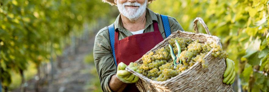 Découvrez les vignerons de buzet